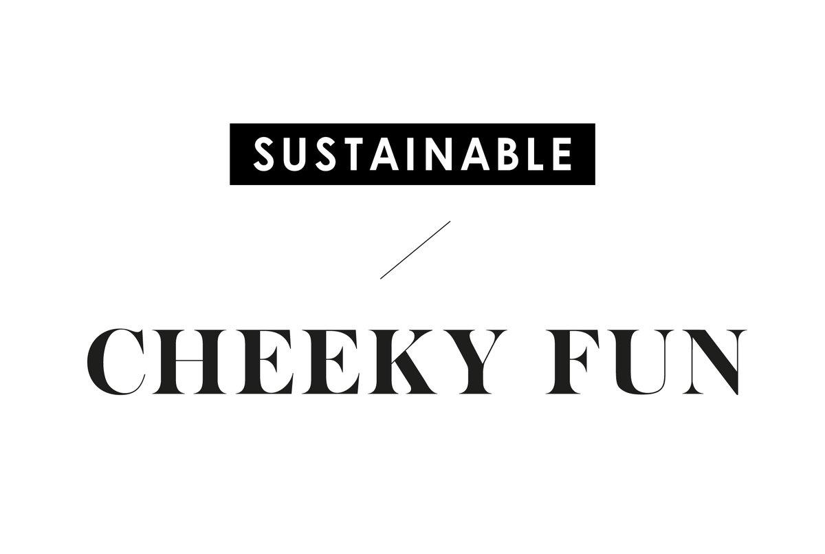 SUSTAINABLE CHEEKY FUN-02-04.jpg